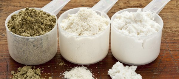 The Ultimate Guide to the Best Protein Powders: Whey, Casein, Egg, Soy, and More...