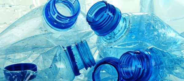 The Dangers of Bisphenol A and What to Do About It
