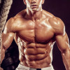 The Top 40 Muscle for Life Articles of 2014