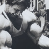 The Ultimate Arms Workout: The Best Arm Exercises for Big Guns