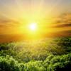 5 Powerful Vitamin D Benefits That Make It a