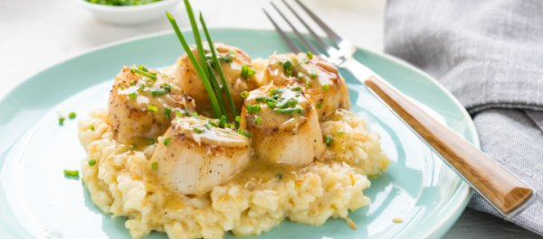 20 Quick and Easy Scallop Recipes