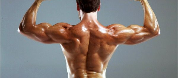 What's the best workout split?