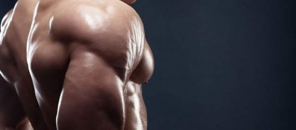 How to Get Bigger and Stronger Triceps in Just 30 Days