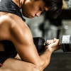"The Science of ""Newbie Gains,"" Explained"