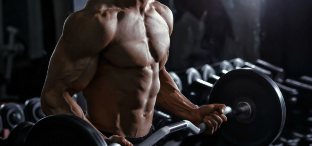 What Every Weightlifter Should Know About Glycogen